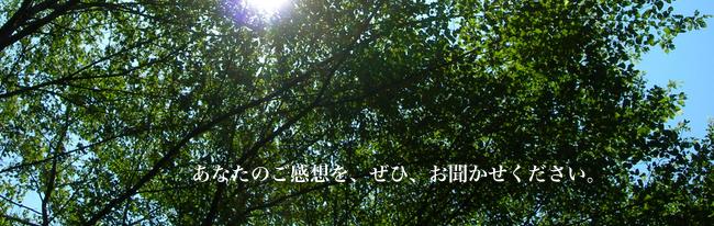 埼玉県川口市のエステ プティ リーフ お客さまから頂いたご感想